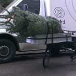 christmas tree on the cargobike