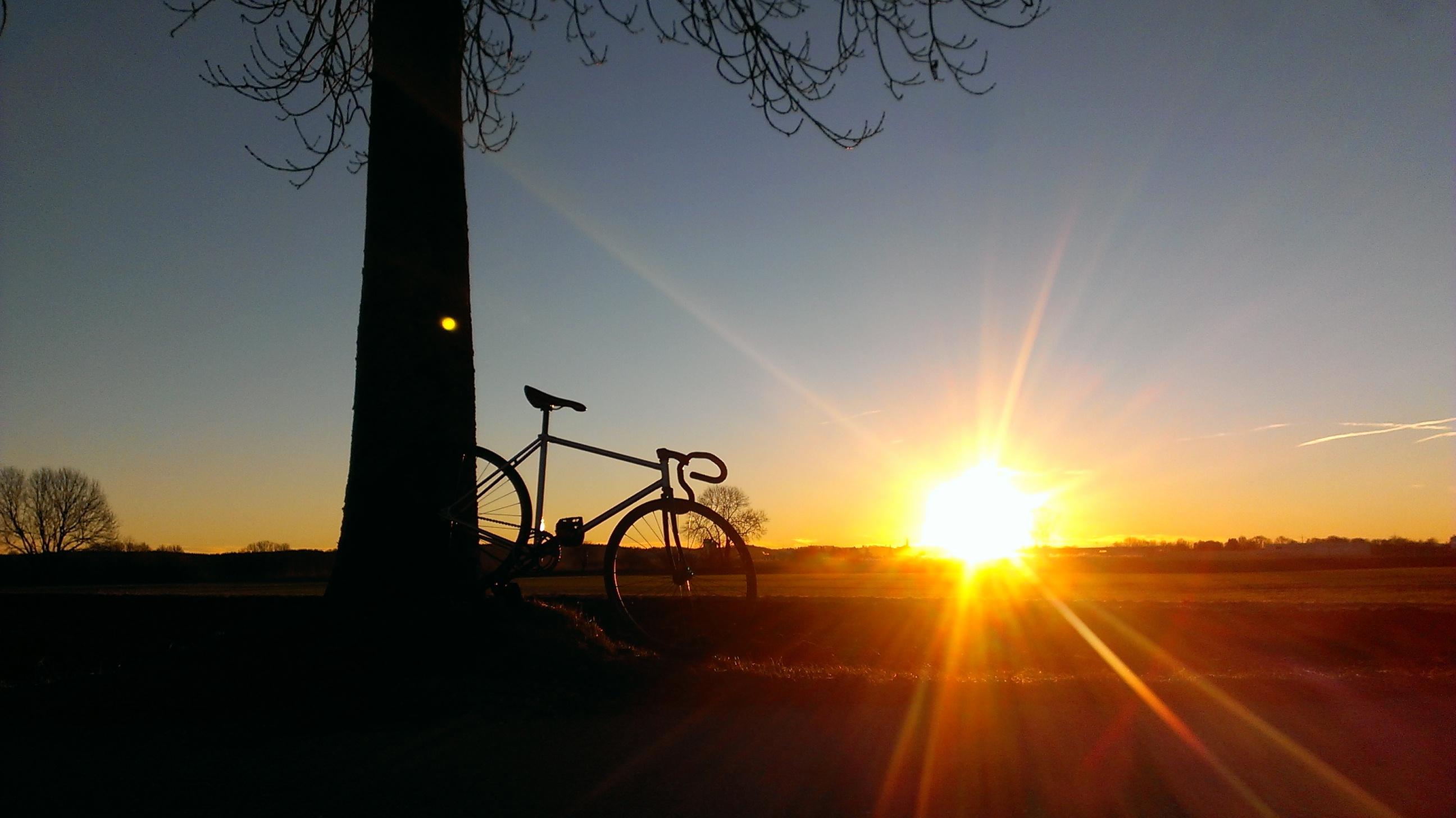 sunny morging ride to work