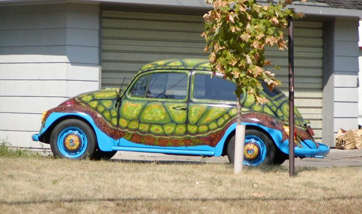 Cars are like turle shells - public domain by William Wesen