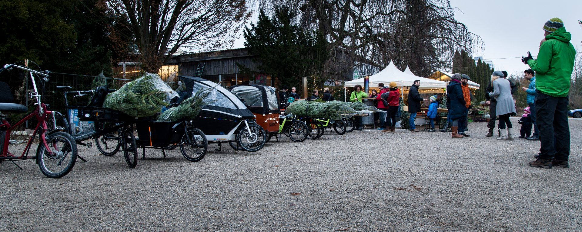 Cargobikes and christmas trees